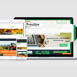site-promittere